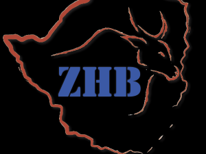 thumb_zhb-300